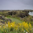 Stock Photo: Landscape of Myvatn
