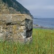 Old pillbox on seacoast 3 - Stock Photo