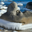 Stock Photo: Stones with ice 8