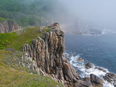 Falaise au bord de la mer — Photo
