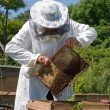 Beekeeper — Stock Photo #13157366