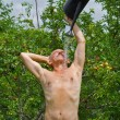 Man in orchard — Stock Photo