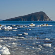 Stock Photo: Small island in winter sea