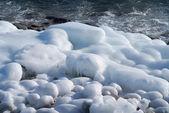 Winter on sea — Stock Photo