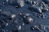 Black Oil Pollution — Stock Photo