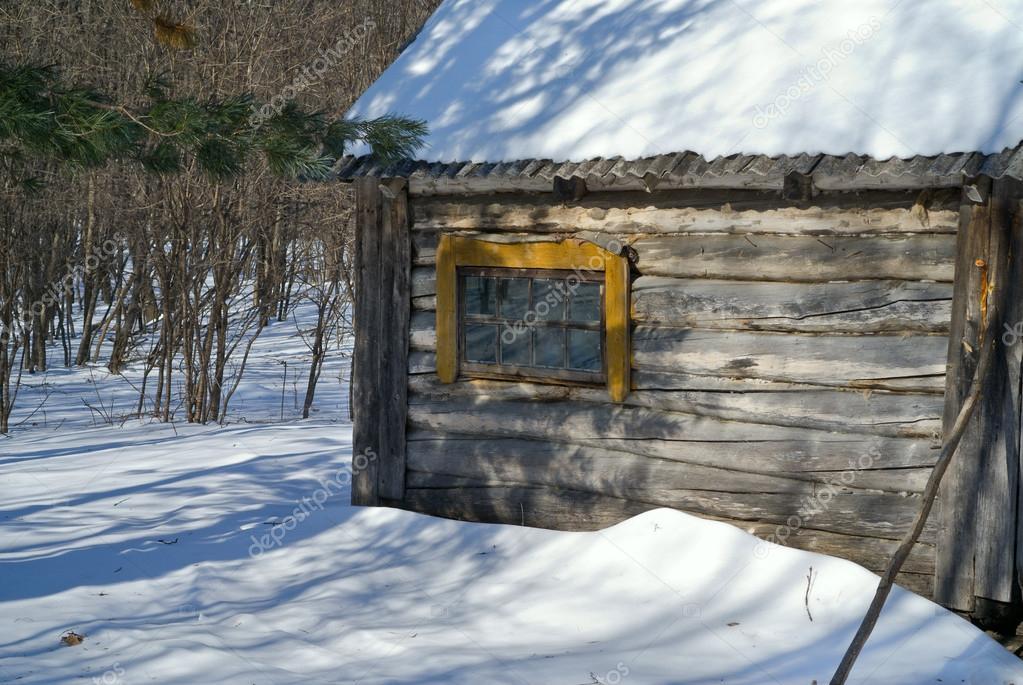 在森林里的小木屋