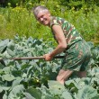 Foto Stock: Gardener with hoe