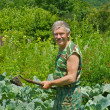 Stock Photo: Gardener with hoe