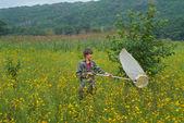 Woman entomologist — Stock Photo