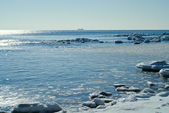 Winter sea — Stock Photo