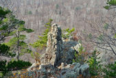 Rock among taiga — Stock Photo