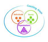 Coaching Areas Diagram — Stock Photo