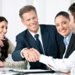 Business handshake to seal a deal — Stock Photo