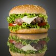 Delicious hamburger — Stock Photo