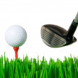 Stock Photo: Golf ball and club