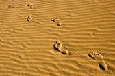 Walking in the beach — Stock Photo