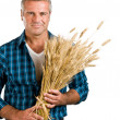 Stock Photo: Farmer with wheat