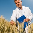 Smiling technician controls wheat field — Foto Stock