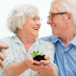 Stock Photo: Retirement savings and investements