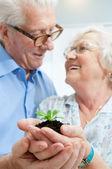 Investice a spoření na penzi — Stock fotografie