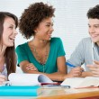 Group Of Friends Studying Together — Stock Photo #22063959
