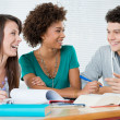 Stock Photo: Group Of Friends Studying Together