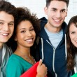 Group Of Happy Students — Stock Photo #22064399