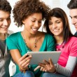 Friends Enjoying Digital Tablet — Stock Photo #22064865