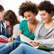 Foto Stock: Friends Studying Together