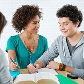 Dva happy přátelé dělat domácí úkoly — Stock fotografie