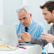 Business Working at Lunch — Stock Photo #24462113