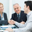 Business Handshake to Seal a Deal - Stock Photo