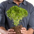 Happy Young Man Holding Plant — Stock Photo