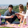 Group Of Friends Having A Picnic — Stock Photo
