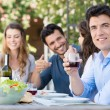 Man Drink Glass Of Wine — Stock Photo #28206731