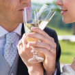 Married Couple Drinking Champagne — Stock Photo #28206733