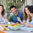 Group Of Friends Having Dinner — Stock Photo #28206853