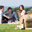 Summer Picnic with Friends — Stock Photo