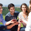 Group Of Friends Enjoying Wine — Stock Photo #28207055