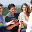 Group Of Friends Enjoying Wine — Stock Photo