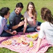 Picnic With Friends at Park — Stockfoto