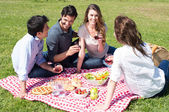 Picnic With Friends at Park — Stock Photo