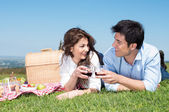 Young Couple Having Picnic — Stock Photo
