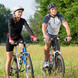 Young Couple With Bicycle In Meadow — Stock Photo #32810305