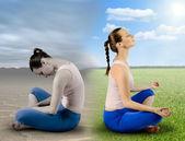 Fresh meditation — Stock Photo