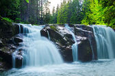 Deeep wood stream — Stock Photo