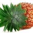 Pineapple - Stock Photo