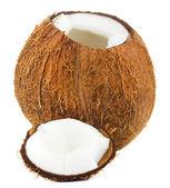 裂纹的椰子 — 图库照片
