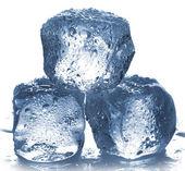 кубики льда — Стоковое фото