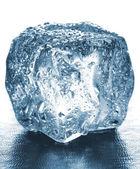 Buz küpleri — Stok fotoğraf